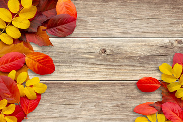 Frame of autumn leaves on a wooden background - a beautiful template for an autumn card or congratulations