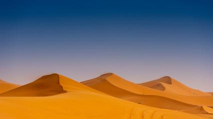 Foto op Aluminium Marokko Beautiful sand dunes in the Sahara desert.