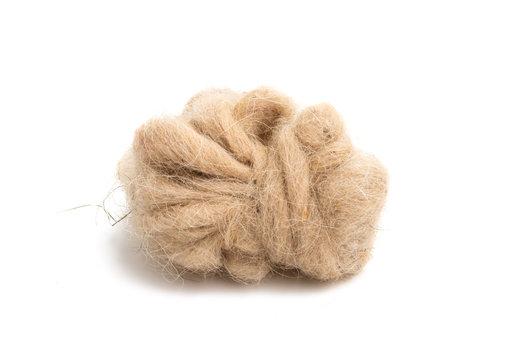 sheep wool isolated
