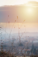 Beautiful abstract blurred nature outdoor scene background