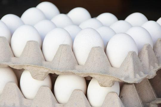 Organic Free Range White Eggs at the Farmer's Market