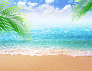 Fototapete - beautiful sandy beach blurred background with palm green leave and Sandy shore