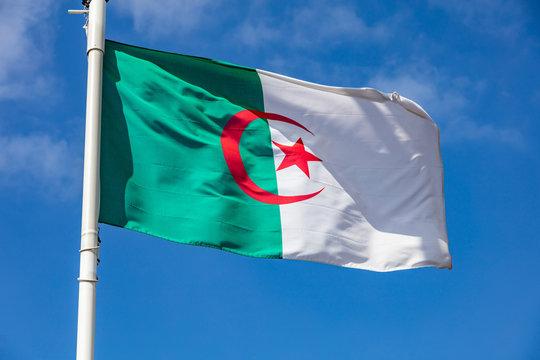 Algerian flag waving against clear blue sky