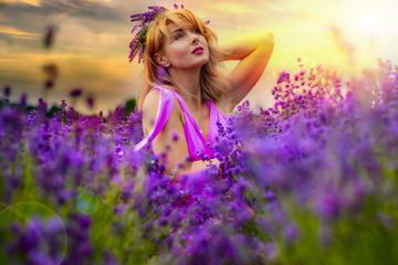 Lavendelfelder