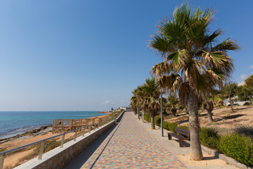 Mil Palmeras Costa Blanca Spain view from the paseo promenade towards Playa Rocamar with palm trees