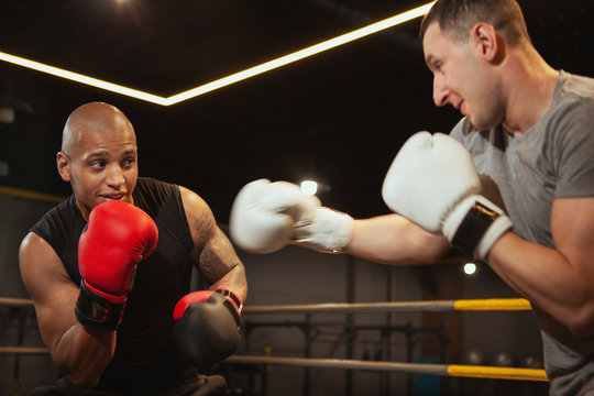 Two men boxing at the gym. Young muscular African boxing fighter training with his friend. Male friends working out together, fighting in boxing rink