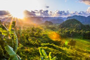 Montage in der Fensternische Honig sunset in the tropics