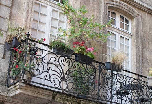 immobilier fenêtre et balcon fleuri avec plante verte à bordeaux. Real estate