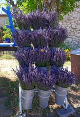 Vente bouquets lavande