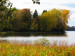 Trees with the color of Fall by the river in Laval, Quebec