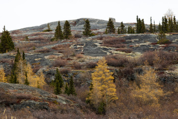 Country scenery in Kuujjuaq, Nunavik, with mountains and trees