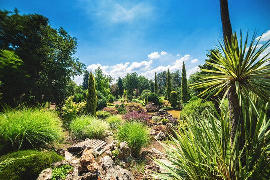 Landscape of Karaca arboretum in Yalova, Turkey, with Mediterranean plants