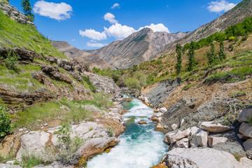 Tortum creek  near the waterfall in summertime in Uzundere, Erzurum, Turkey
