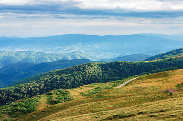 beautiful mountain landscape. view from the top of a hill in to the valley. sunny weather in late summer