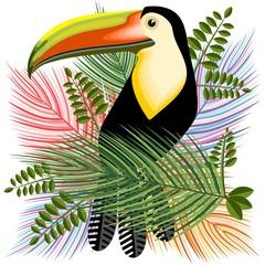 In de dag Draw Toucans Hawaiian Summer Mood Vector Illustration