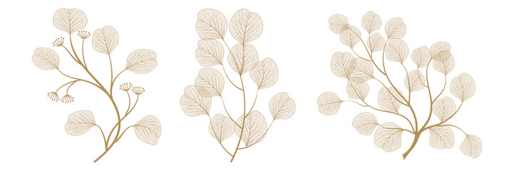 Set branches with leaves eucalyptus. Vector illustration. EPS 10. Fototapete