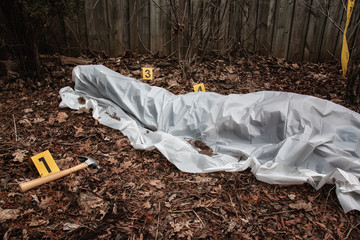 Victim of a violent crime under a sheet in a rural yard. With evidence markers and a hammer.