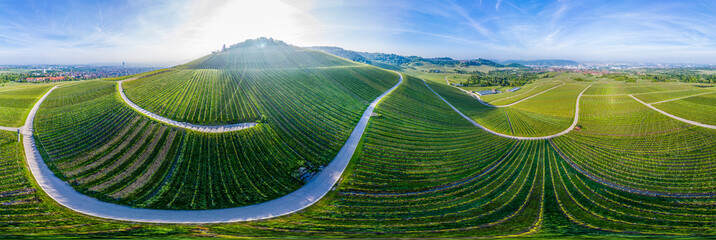 Aerial view over vineyards at Kappelberg in spring, Fellbach, Germany