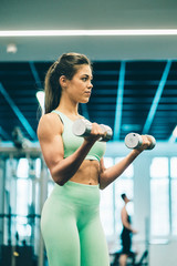 Young athletic woman in sportswear training and concentrated on lifting dumbbell in gym