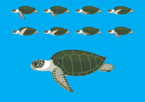 Sea Turtle Animation Swimming Cartoon Vector Illustration-01