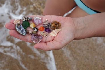 seashells in the female hand