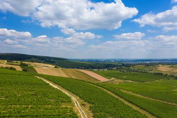 Blick von ob en in den Rheingau bei Rauenthal/Deutschland