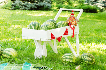 Fotobehang cart with watermelons and red garland on green grass in summer