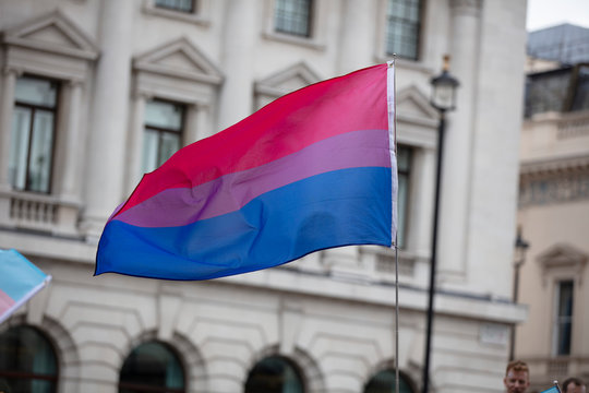 A bisexual flag is waved in the air at a pride event
