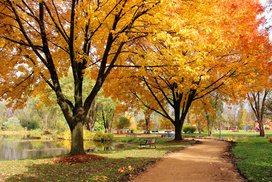 Midwest nature background with park view.Beautiful autumn landscape with colorful trees around the pond and bench in a city park.Kids playground in a background.Lakeview park, Middleton, Madison area.