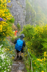 Madeira - Wanderung im Regen am Pico Ruivo