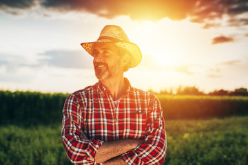 senior bearded farmer with straw hat standing crossed arms in field with sun behind him Wall mural