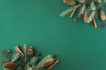Christmas green background with fir tree and cones, cinnamon, anise. Flat lay, top view with copy space Wall mural