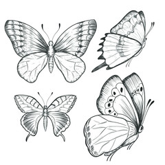 Sketch ink graphic butterflies set illustration, draft silhouette drawing, black on white line art. Vintage etching nature design.