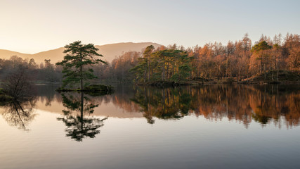 Foto op Plexiglas Diepbruine Beautiful landscape image of Tarn Hows in Lake District during beautiful Autumn Fall evening sunset with vibrant colours and still waters