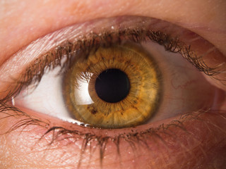 Tuinposter Iris Human eye close up