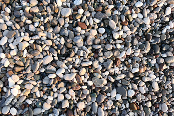 Wall Mural - Pebble beach