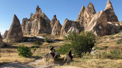 excursion, exploration and tourism in the country of beautiful horses