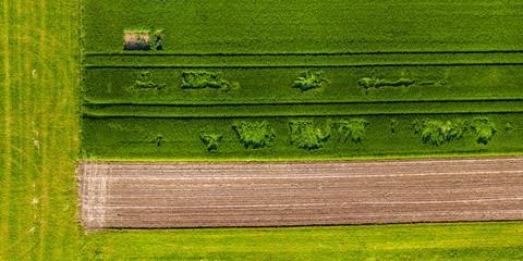 Luftaufnahme Agrarflächen im Frühjahr, Remstal, Rems Murr Kreis, Baden Württemberg, Deutschland