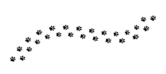 Paw print track on white background. Vector illustration