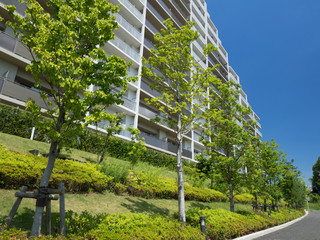 Fototapete - 新緑と大型マンション