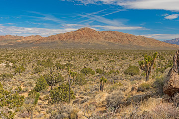 Desert Mountain Panorama in Early Spring