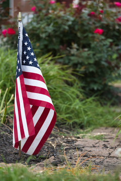 small flag in a garden with brick walkway in front of a rose bush