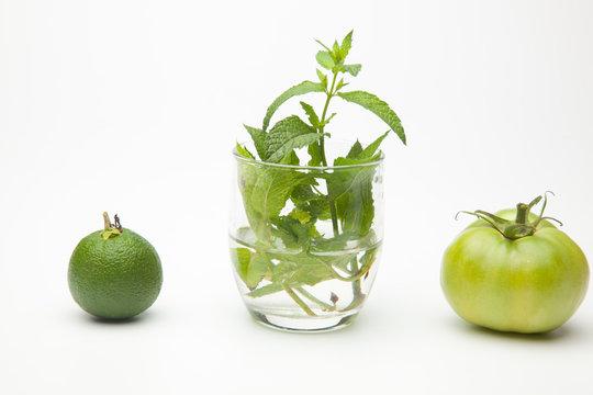 Fruta verde, naranja verde, menta y tomate verde, tres tonalidades de verde distintos. Color verde