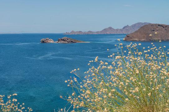 Seascape of Bahia Danzante, or Dancer Bay in LORETO, Baja California Sur. MEXICO