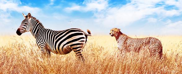Wall Mural - Zebra and cheetah in the African savannah. Serengeti National Park. Africa. Tanzania. Wide format.