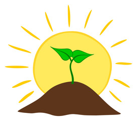 Growing plant from ground with sun. Vector illustration.