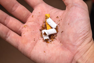 Asian Man Destroying Cigarette in His Hand. Concept Picture of Better Life without Smoke