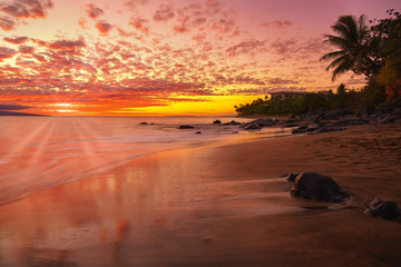 Wall Mural - Hawaiian sunset on the beach