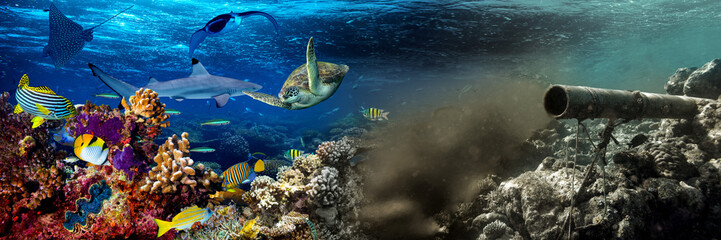 underwater sewer wastewater pipe pumping dirty waste junk water in coral reef enviroment nature...