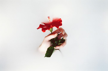 Man holding flower in surreal way out of liquid